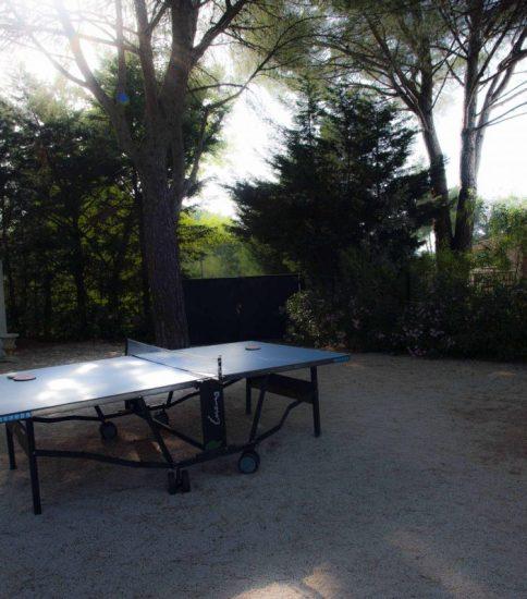全仏オープンと世界卓球